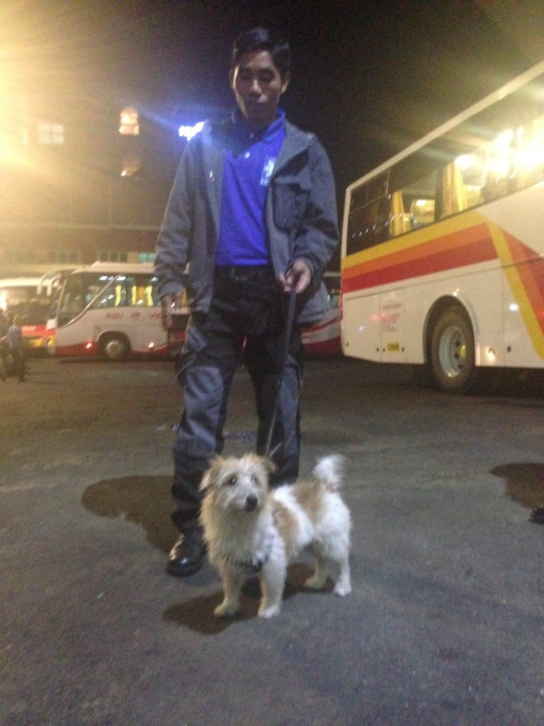 Which brings us to meet Narcotics sniffing Jack Russel to police anyone who would wanna smuggle Green Gurbs to Manila